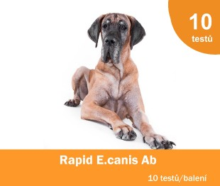 Rapid E.canis Ab Test Kit, 10x1 test